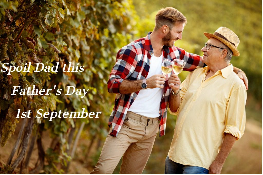 father-and-son-vintner-harvest-wine-in-vineyard-picture-id827752156 (1)